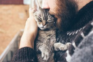 cat for addiction recovery